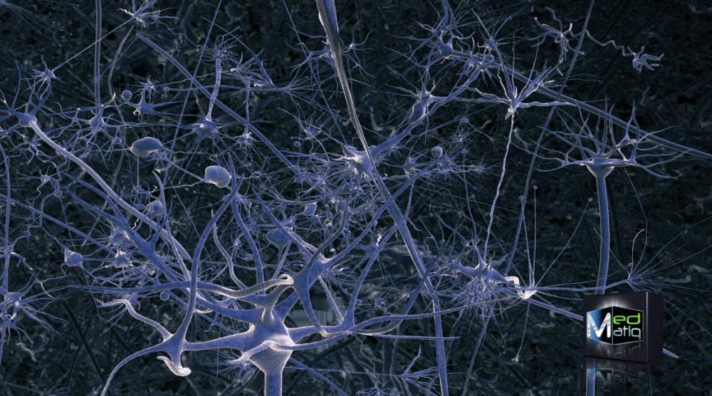 Lucy, quand le cerveau de Besson rencontre la Science. (3/3)